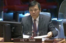 Vietnam calls for more efforts to stabilise situation in Bosnia and Herzegovina