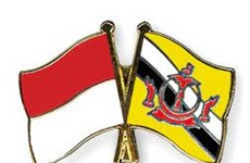 Indonesia, Brunei agree to cooperate on anti-money laundering