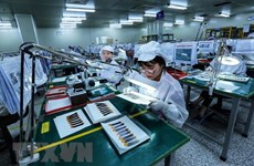 Vietnam constitutes potential market for British electronics firms: webinar