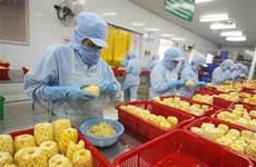 Vietnam's export turnover surges 28.4 percent in H1