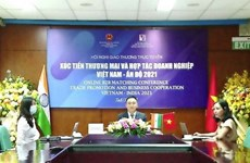 Vietnamese and Indian enterprises look for business opportunities