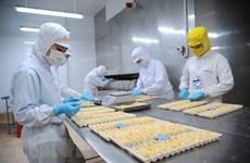 Vietnam's shrimp exports rake in 1.7 billion USD H1