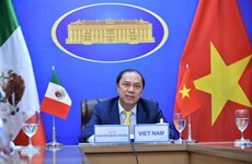 Political consultation held to reinforce Vietnam - Mexico relations