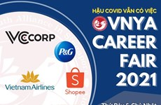 Vietnamese Youth Alliance in Singapore holds online career workshop