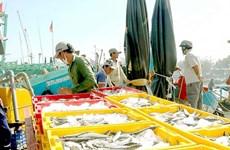 Binh Thuan fishing industry thrives amid pandemic