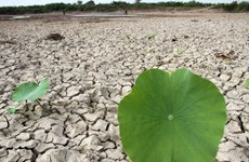 Climate change affects 79 percent of Cambodia's population