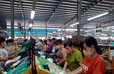 Binh Phuoc: Seven-month industrial production up 15.63 percent