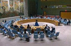 UNSC: Vietnam highly values UNAMID's contributions