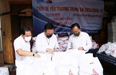 Vietnamese expats directly contribute to COVID-19 combat at home: official
