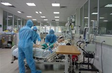Officials check progress of intensive care centres in HCM City