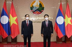 Vietnamese, Lao ministries, commissions forge cooperation