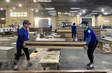 Vietnam's wood products export surges 55 percent in seven months