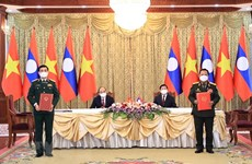 Vietnamese, Lao armies stand side by side in any circumstances: Minister