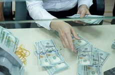 Daily reference exchange rate up 6 VND at week's beginning