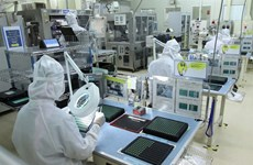 Electronics exports forecast to be robust this year