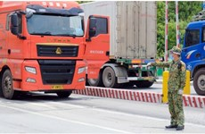Concerted efforts needed to ease barriers to Vietnam-China agricultural trade