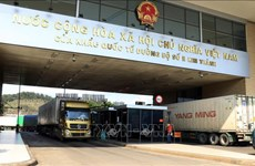 Ministry proposes solutions to develop border trade