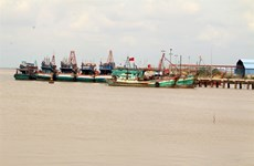 Ben Tre invests in building ports, storm shelters for fishing vessels