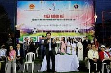 Oversea Vietnamese join hands with pandemic combat at home