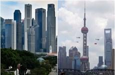 Singapore, China enhance cooperation in digital trade, green economy