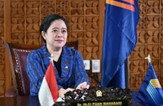 Indonesian House Speaker calls for cooperation to push back COVID-19