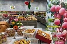 Vietnam's farm produce exports to Australia surge