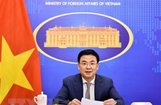 Vietnam further promotes multifaceted cooperation with African countries