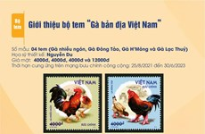 Vietnam issues stamp collection featuring indigenous chickens
