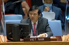 Vietnam calls for ensuring security of elections in Iraq