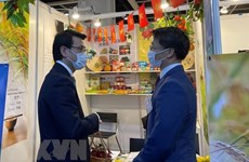 Vietnam looks to expand cooperation with Hong Kong