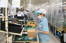 Hanoi flexibly maintains production amid COVID-19