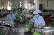 Ben Tre aims to have four agricultural value chains reaching 1 billion USD by 2030