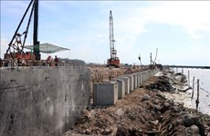 Thua Thien-Hue steps up construction of ports, shelters