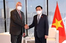 Vietnamese NA Chairman receives leaders of Austrian businesses
