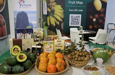 Vietnamese farm produce introduced at fruit & vegetable show in Italy