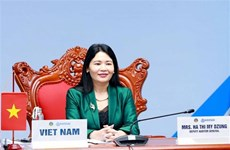 Vietnam attends virtual 8th ASOSAI Symposium