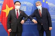 Top leaders of Vietnamese, European parliaments hold talks