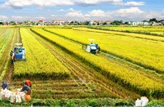 Localities asked to ensure plant, animal varieties supply to farmers amid COVID-19