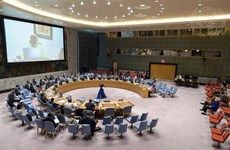 Vietnam underlines need to consider countries' situation in transitions from peacekeeping operations