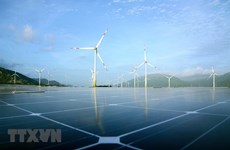 Vietnam advised to promote just energy transition