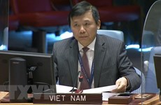 Vietnamese ambassador urges end to all military actions in Yemen