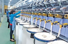 Thai Binh moves to boost support industry development