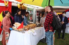 Vietnam joins Workers' Party of Belgium solidarity festival
