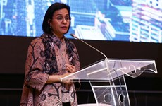 Indonesia collects 245.5 million USD in digital tax