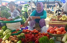 Indonesia, FAO reaffirm stronger partnership for sustainable food systems