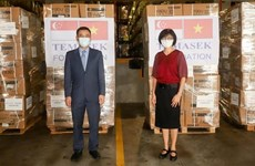 Vietnamese Embassy in Singapore receives first batch of aid from Temasek Foundation