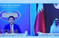 Vietnam, Qatar hold great cooperation potential