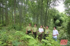 Thanh Hoa approves plan to preserve, develop Pu Luong Natural Reserve