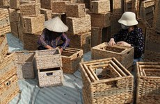 Craft villages in Hanoi resume production