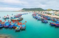 Tien Giang exerts every effort to combat IUU fishing